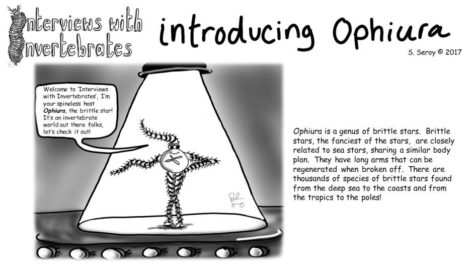 1-introducing ophiura