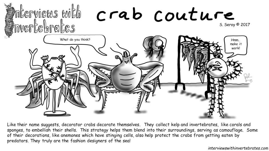 11 - crab couture