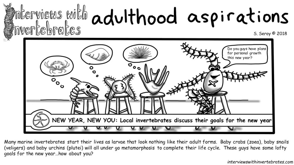 adulthood aspirations
