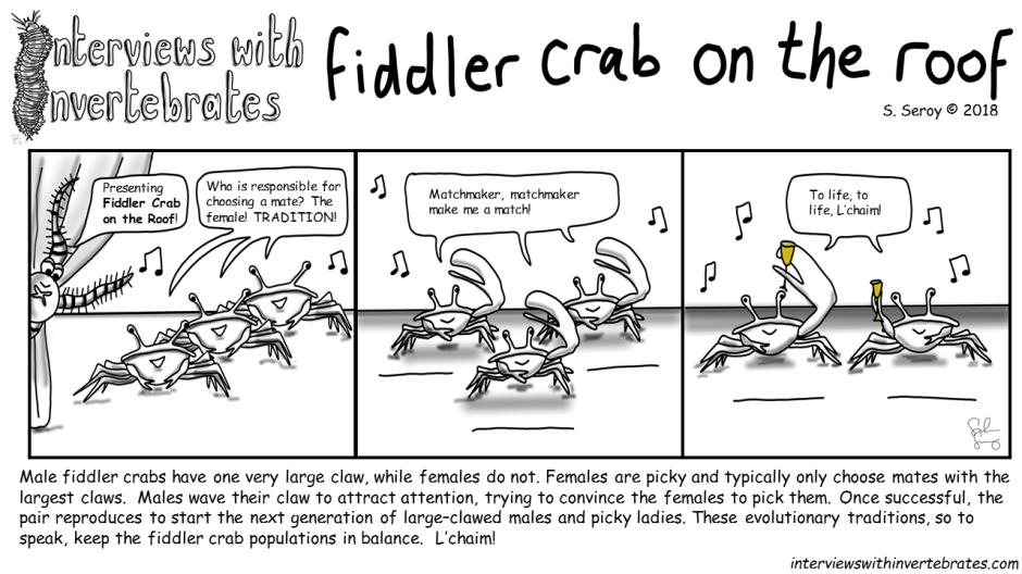fiddler crab on the roof
