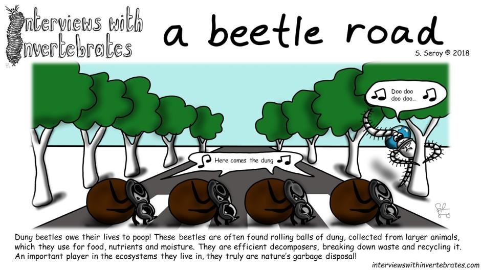 a_beetle_road