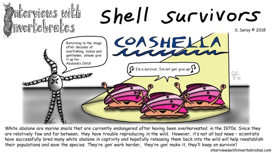 shell_survivors