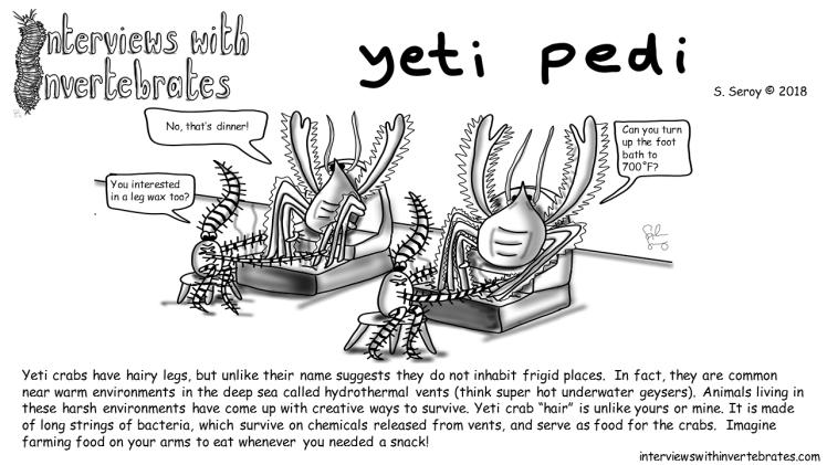 yeti_pedi