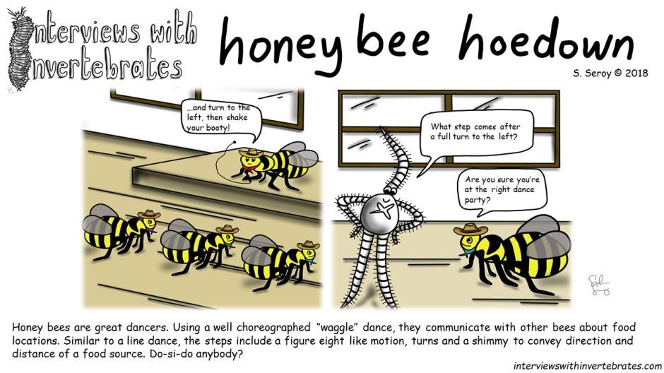 honeybee_hoedown