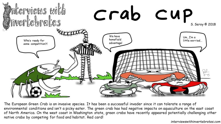 crab_cup