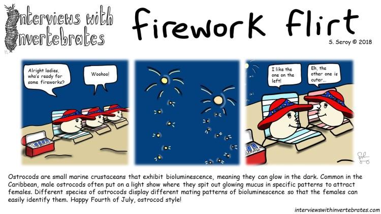 firework_flirt3
