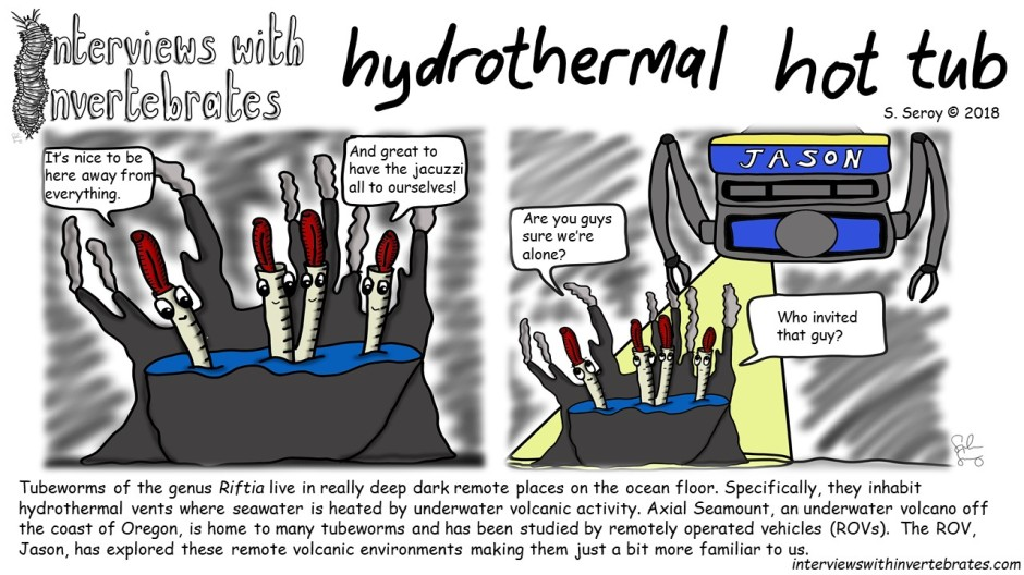 hydrothermal_hot_tub3