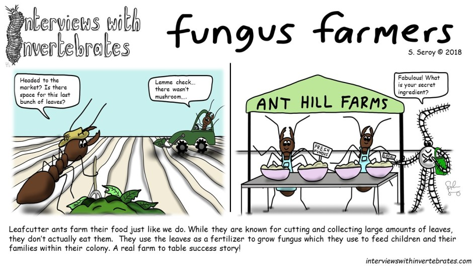 fungus_farmers
