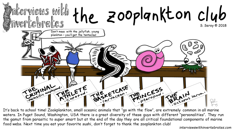 the zooplankton club