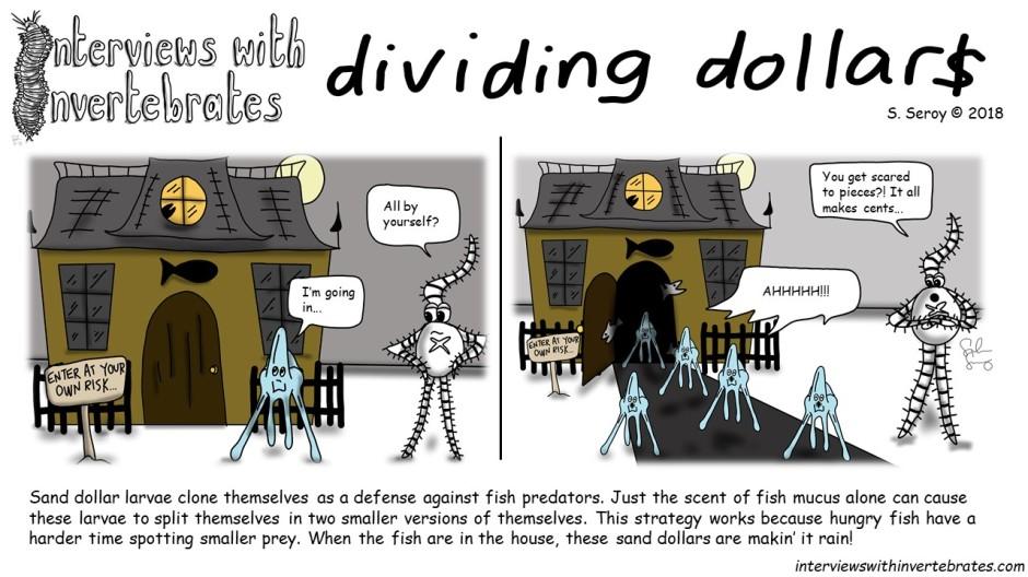 dividing_dollars