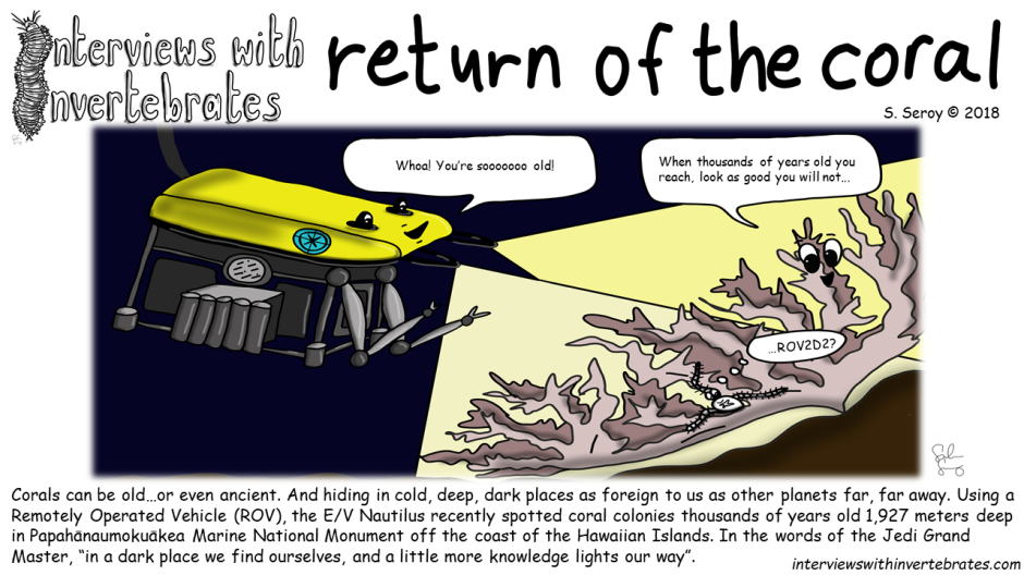 return_of_the_coral