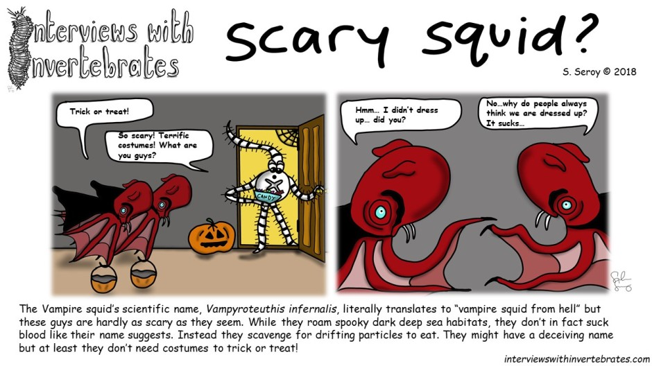 scary_squid