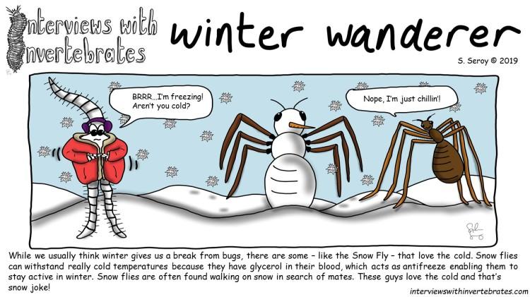 winter_wanderer