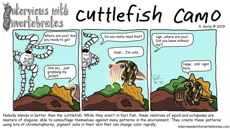 cuttlefish_camo