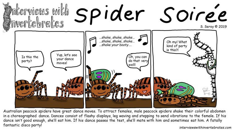 spider_soiree