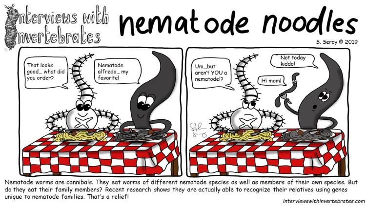 nematode noodles