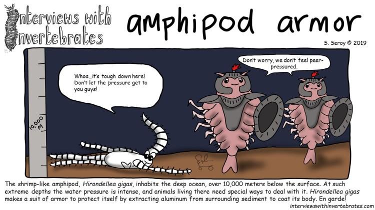 amphipod armor
