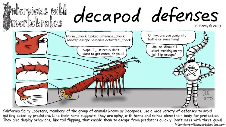 decapod_defenses