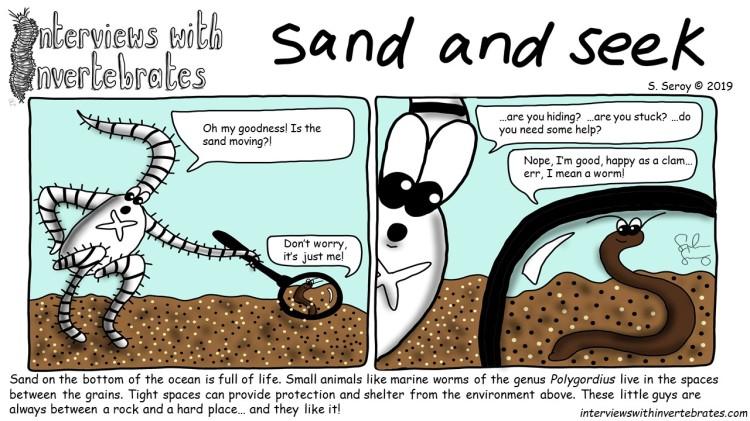 sand_and_seek