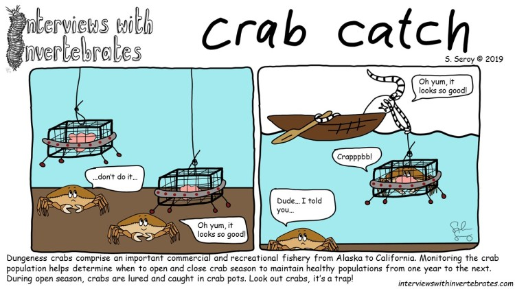 crab catch