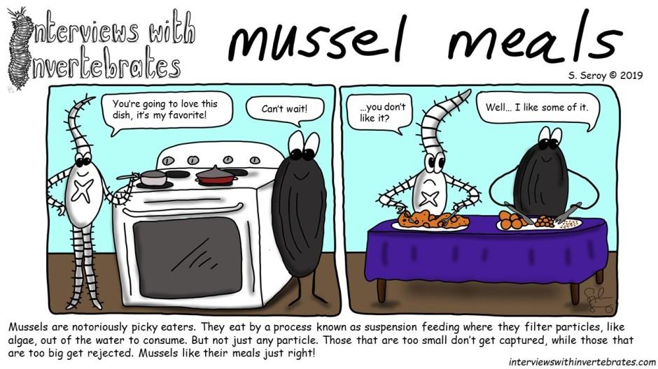 mussel_meals