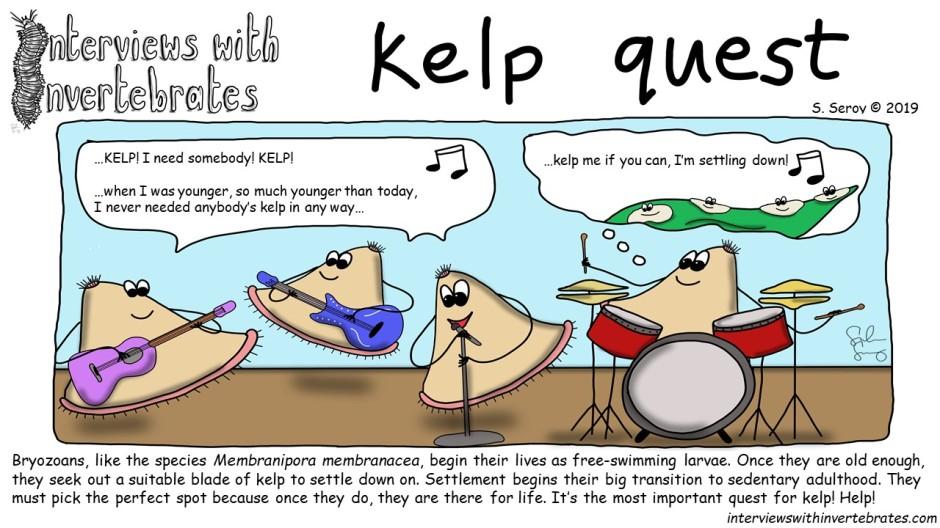 kelp quest.jpg