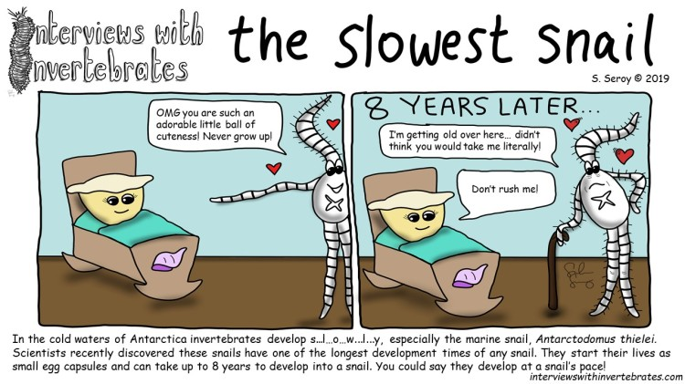 the_slowest_snail
