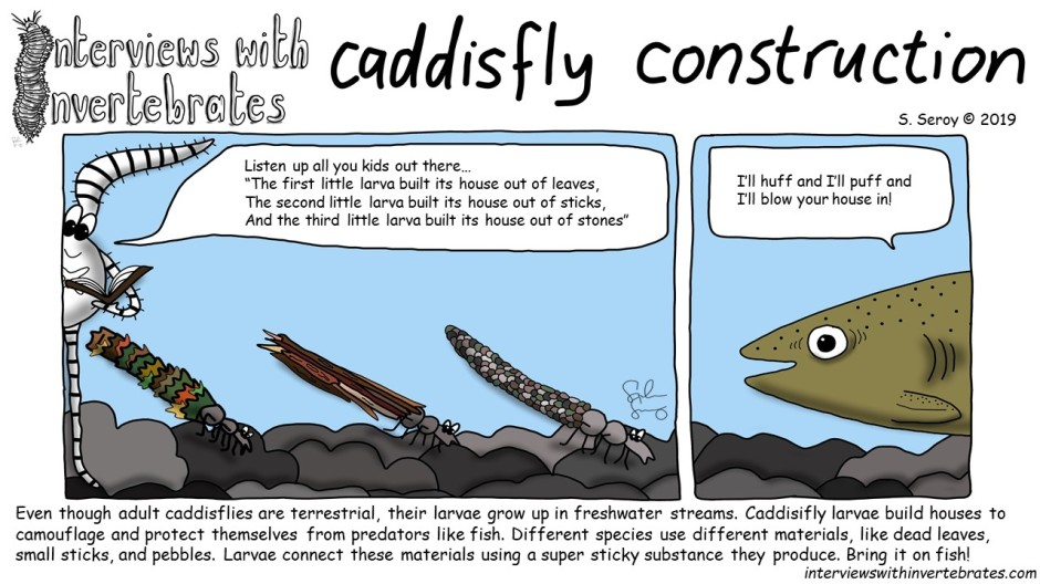 caddisfly_construction