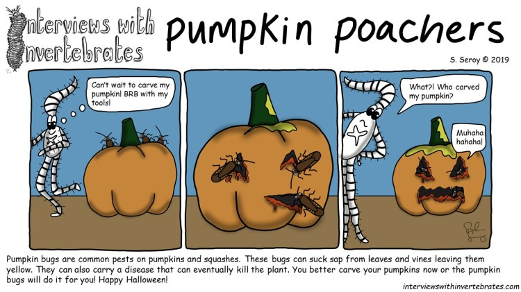 pumpkin_poachers