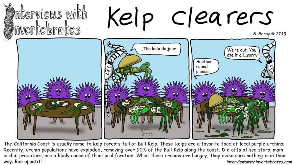 kelp_clearers