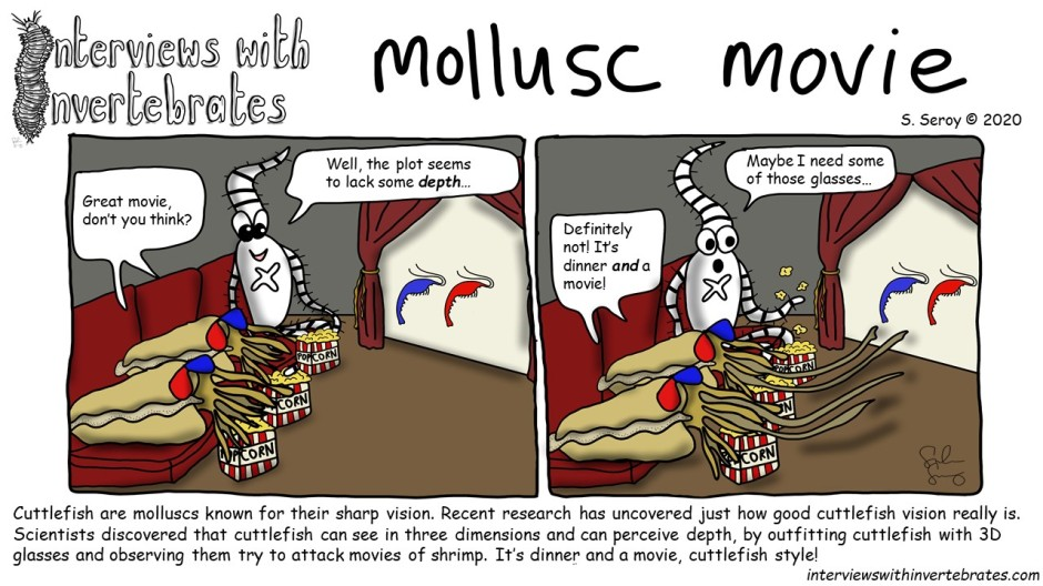 mollusc_movie