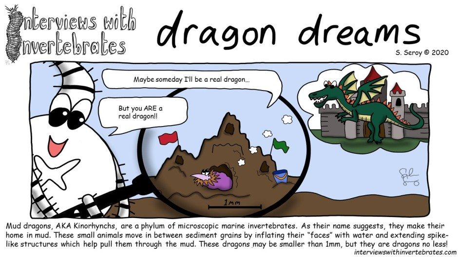 dragon_dreams