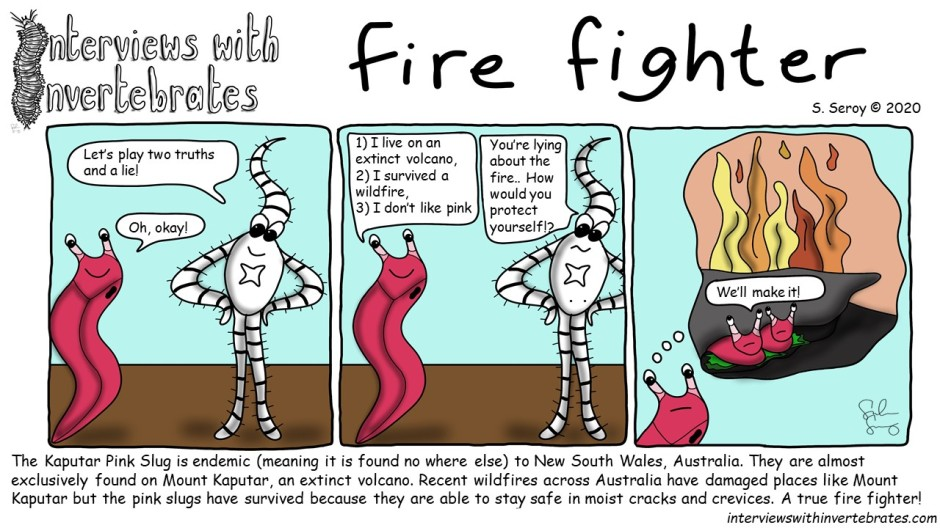 fire_fighters
