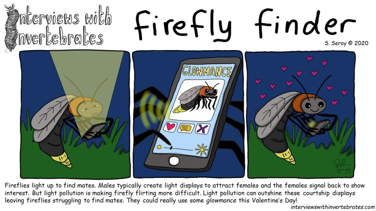 firefly_finder