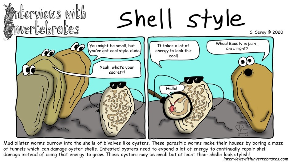 shell_style